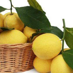 limoni calabria buccia edibile