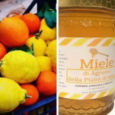 agrumi e miele