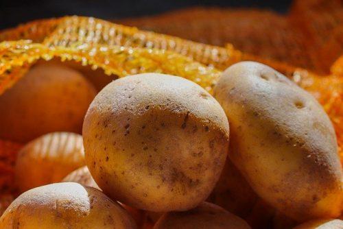 patate calabria sila 2